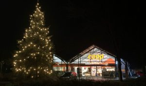 Kerstboom Voorst